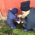 Frankie Roos første æggejagt